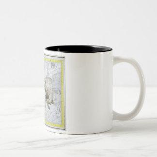 Constellation of Taurus, plate 2 from 'Atlas Coele Two-Tone Coffee Mug