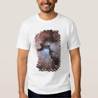 Constellations T Shirt