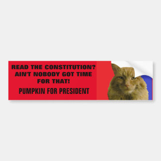 Constitution? Ain't Nobody Got Time For That! Car Bumper Sticker
