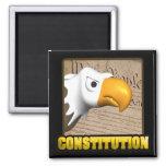 Constitution Fridge Magnet
