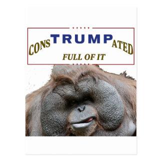 consTrumpated 2016 Postcard