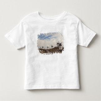 Consuegra, antique La Mancha windmills 4 T-shirt