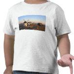 Consuegra, La Mancha, España, molinoes de viento Camisetas