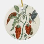 """Consuelda, """"de un herbario curioso"""", 1782 (inglés adorno navideño redondo de cerámica"""