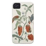 """Consuelda, """"de un herbario curioso"""", 1782 (inglés  iPhone 4 funda"""