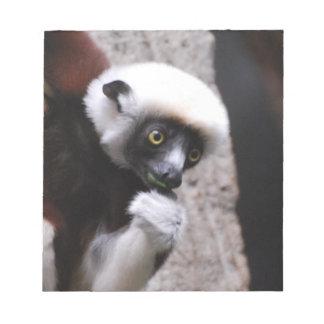 Consumición adorable del Lemur de Sifaka Libretas Para Notas