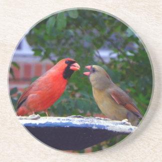 Consumición cardinal de los pares posavasos de arenisca