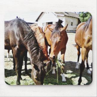 Consumición de caballos tapetes de ratón