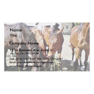 Consumición de caballos tarjetas de visita