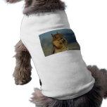 Consumición de la ardilla camisa de perro