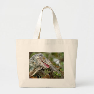 Consumición de la iguana bolsas lienzo
