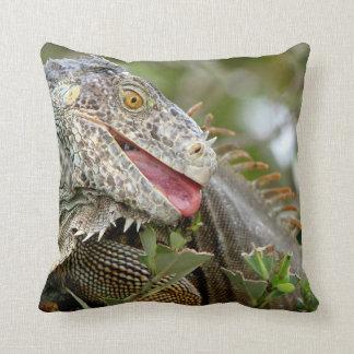 Consumición de la iguana cojines