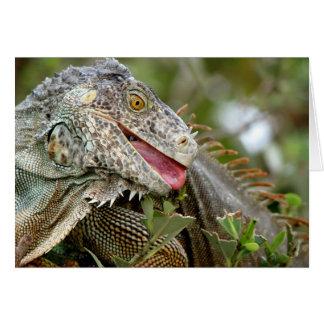 Consumición de la iguana tarjeta