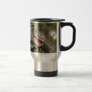 Consumición de la iguana tazas de café