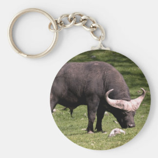 Consumición del búfalo del cabo llavero redondo tipo pin
