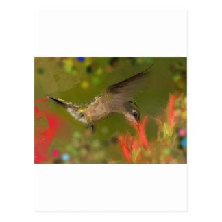 consumición del hummer postales