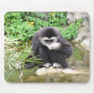 Consumición del mono alfombrillas de raton