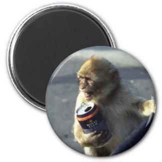 Consumición del mono imán redondo 5 cm