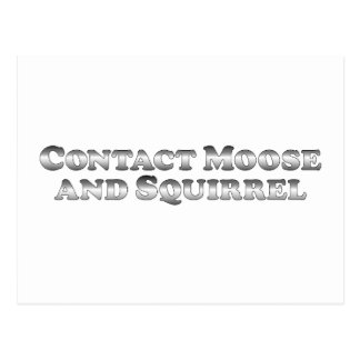 Contact Moose and Squirrel - Basic Postcard