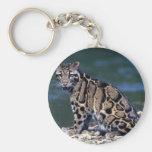 Contacto nublado del Leopardo-ojo Llavero Personalizado