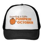Contando con una pequeña calabaza en octubre gorra
