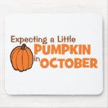 Contando con una pequeña calabaza en octubre tapetes de raton