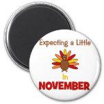 ¡Contando con una pequeña Turquía en noviembre! Imanes De Nevera