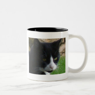 Contemplating kitty mug
