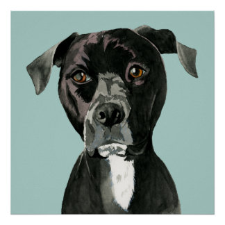 """""""Contemplating"""" Pit Bull Dog Painting Poster"""