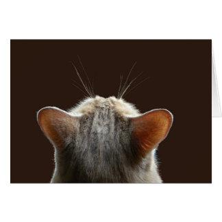 contemplation card
