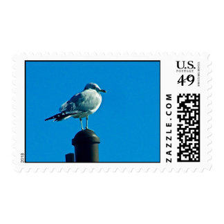 Contemplation of Life Postage
