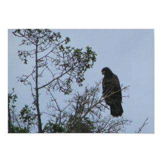 Contemplative Eagle 5x7 Paper Invitation Card