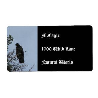 Contemplative Eagle Shipping Label