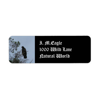 Contemplative Eagle Return Address Label