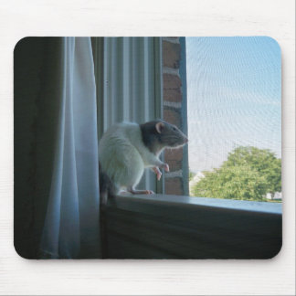 Contemplative Rat Mousepad