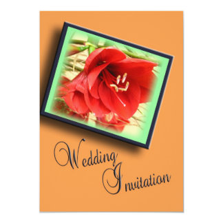 Contemporary Wedding Invitation - red amarylis