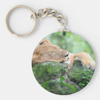 Contended Sleeping Lion Basic Round Button Keychain