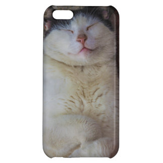 Content Cat Sleeping on Her Back iPhone 5C Case