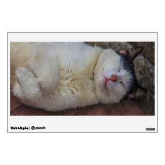 Content Cat Sleeping on Her Back Wall Decal