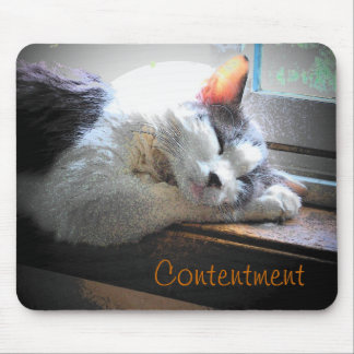 Content Sleeping Kitty Mouse Pad