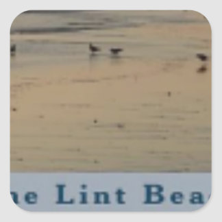 content The Lint Beach TLB Square Sticker