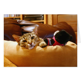Contented Kitty Card