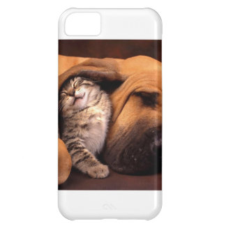 Contentment with a Bestfriend iPhone 5C Cases
