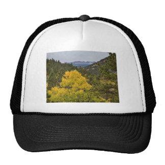 Continental Divide Autumn View Trucker Hat