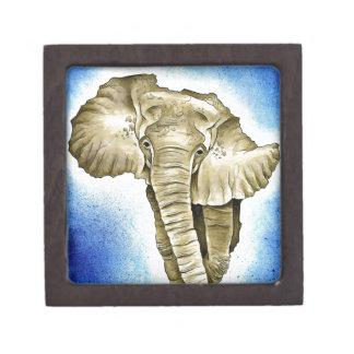 Continente africano caja de regalo de calidad