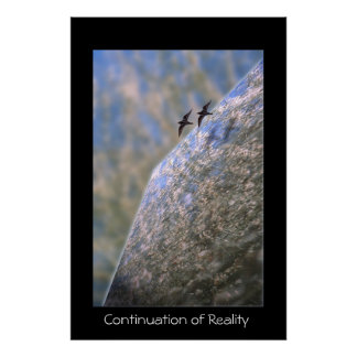 Continuation of Reality Poster
