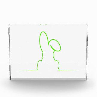 Contour of a hare light green award