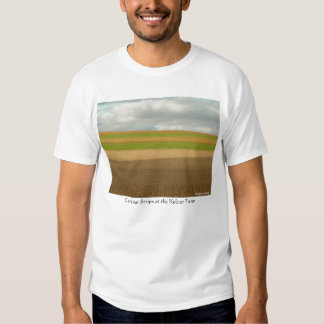 Contour Strips Tee Shirt