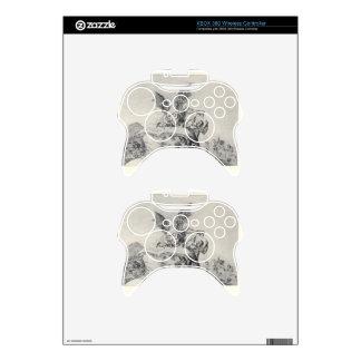 Contra el bien común de Francisco Goya Mando Xbox 360 Skin