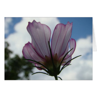 Contra el cielo Notecard floral Tarjeta Pequeña